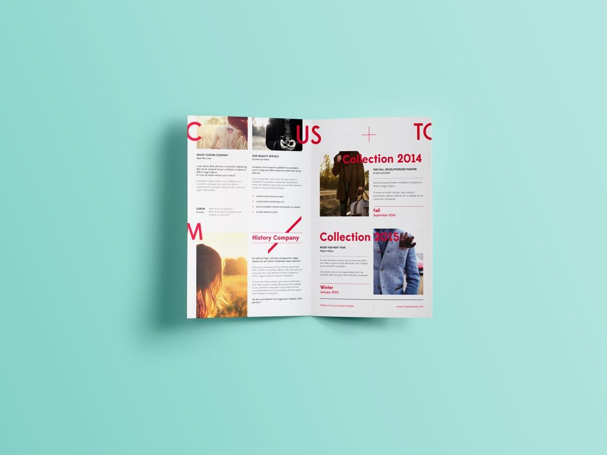 Brochure 1b